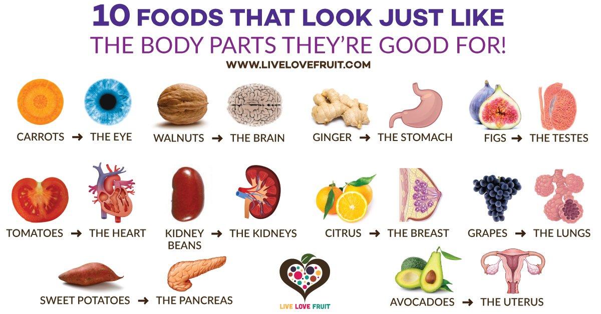 Food - Organ-Live-Love-Food